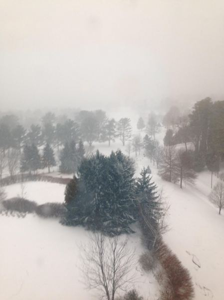 Blizzard 2016 Asheville, North Carolina