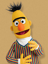 Bert from Sesame Street