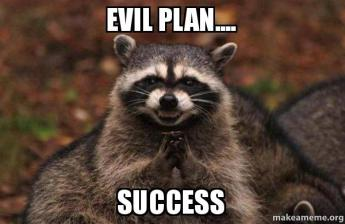 Evil Plan Success Raccoon Meme