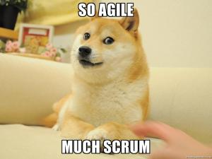 Agile Marketing Dog Meme